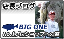店長ブログ BIG ONE No.1プロショップへの道